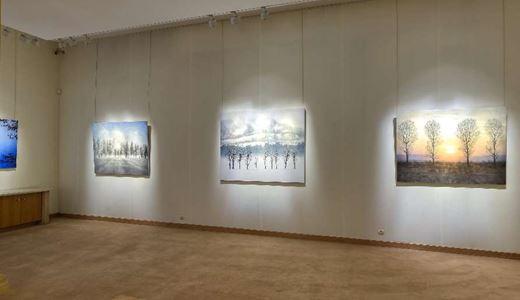 Galerie Tamenaga - Nouvel Horizon Japon