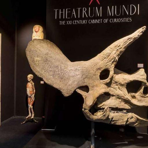 Theatrum Mundi SRL - BRAFA 2018
